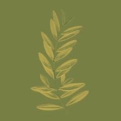 Olio extraverginedi oliva